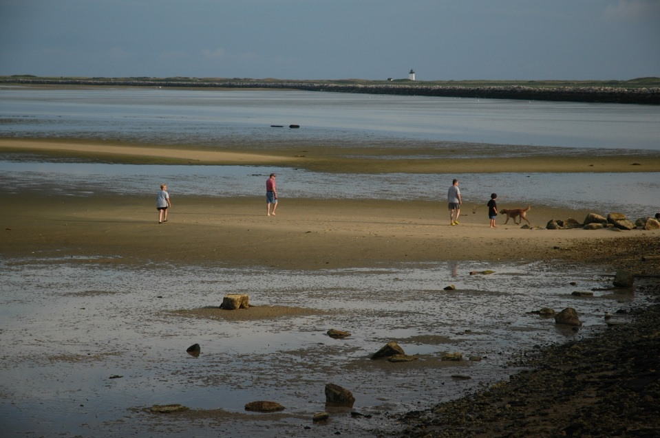 Treasure Hunting at Low Tide by Leo Brady